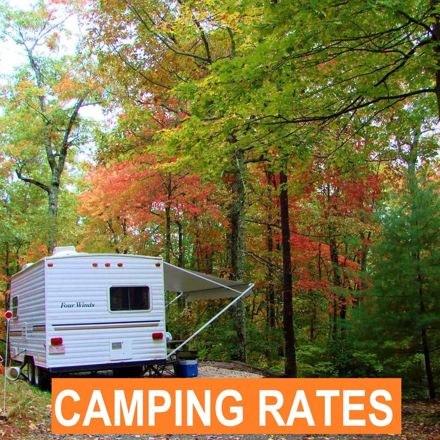 Cabins   Camping   Brevard NC   Dupont Forest   Pisgah