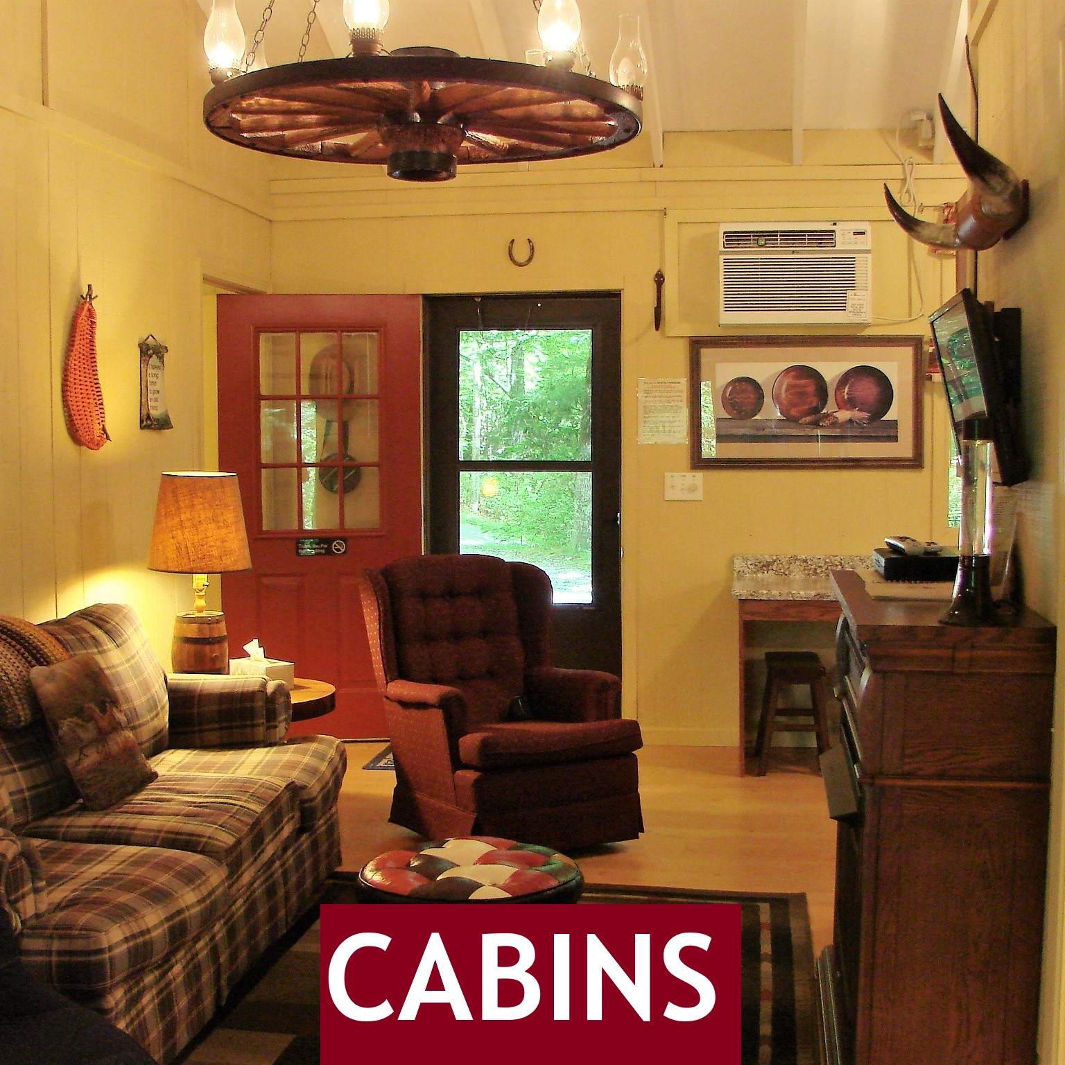 cabins | camping | brevard nc | dupont forest | pisgah forest | land